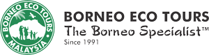 Borneo Eco Tours